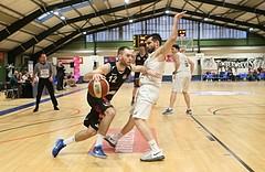 Basketball 2.Bundesliga 2016/17, Grundurchgang 16.Runde D.C. Timberwolves vs. Mattersburg Rocks