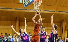 Basketball 2.Bundesliga 2017/18, Grunddurchgang 13.Runde Basket 2000 vs. D.C.Timberwolves